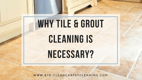 Why Tile & Grout Cleaning is Necessary?