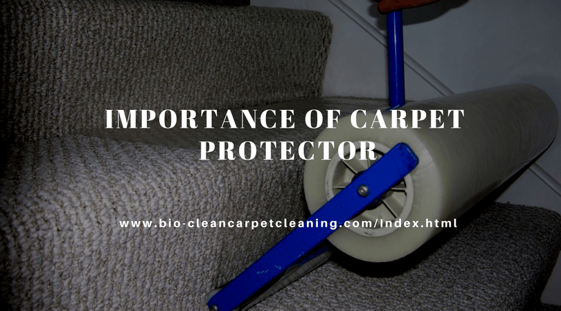 Importance of Carpet Protector