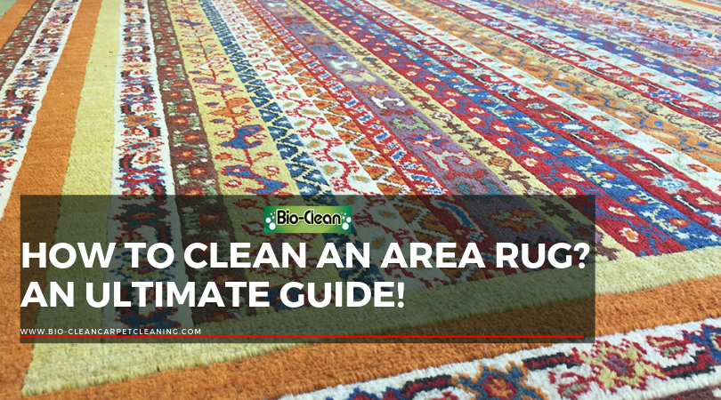 How To Clean an Area Rug? An Ultimate Guide!