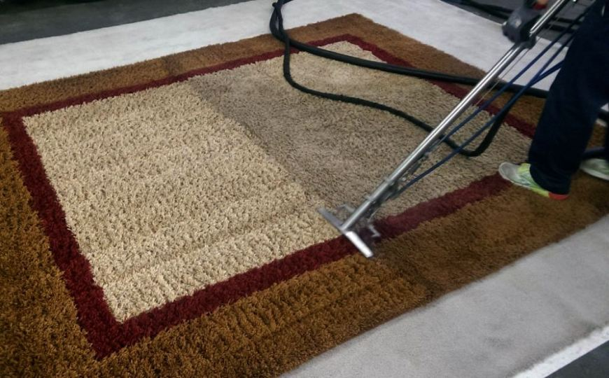 How To Clean an Area Rug - bioclen
