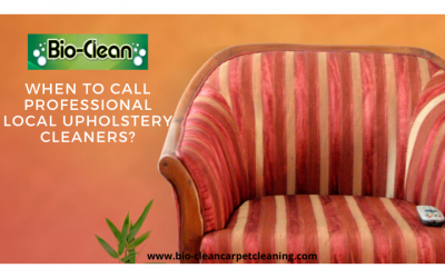 When to Call Professional Local Upholstery Cleaners?