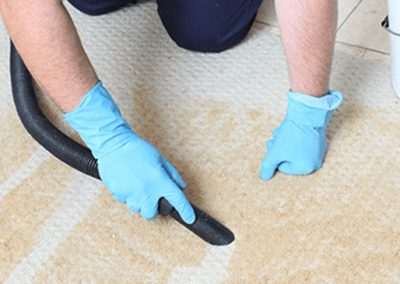 Professional Vacuuming the carpet