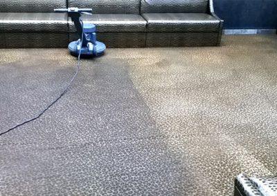Carpet Grooming