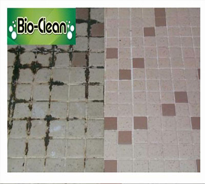 Tile and Grout Cleaning Pottstown PA