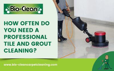 How Often Do You Need A Professional Tile And Grout Cleaning?