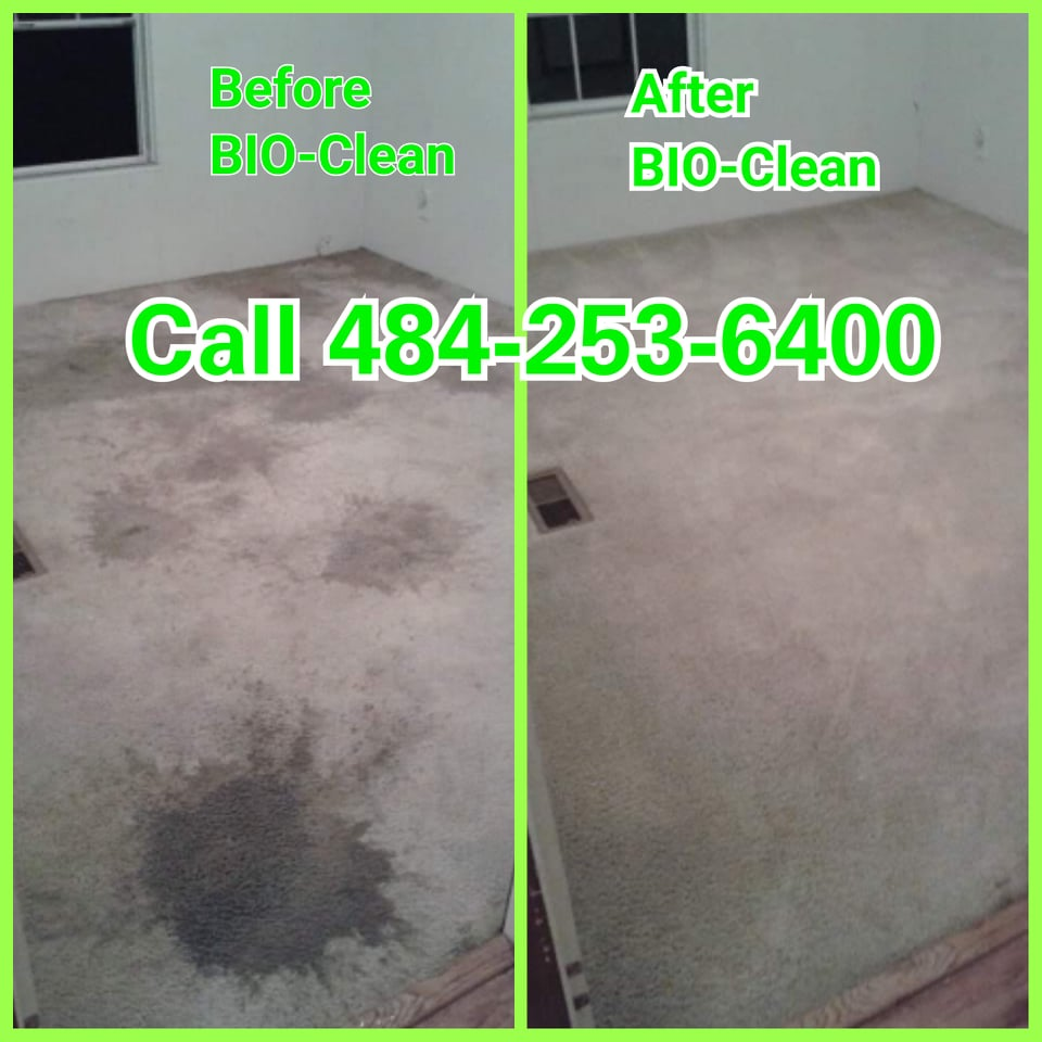 Before After Carpet Cleaning Service
