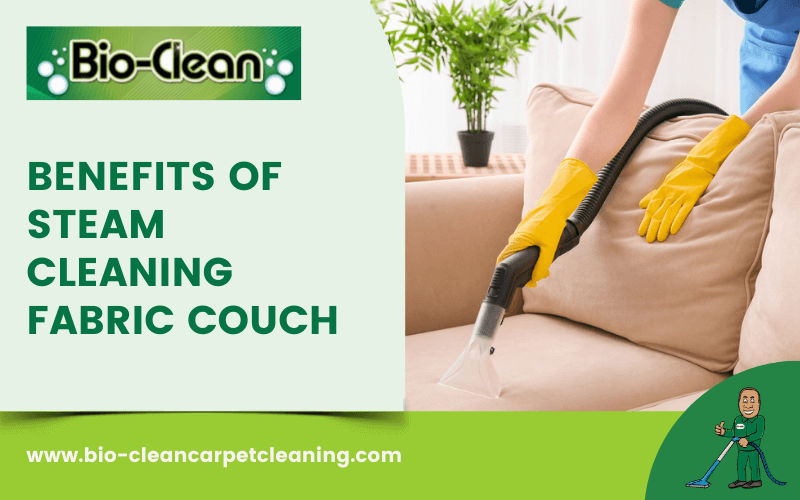 Steam Cleaning Fabric Couch