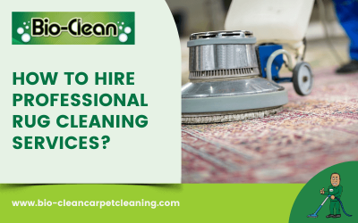 How To Hire Professional Rug Cleaning Services?
