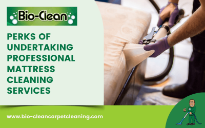 Perks Of Undertaking Professional Mattress Cleaning Services